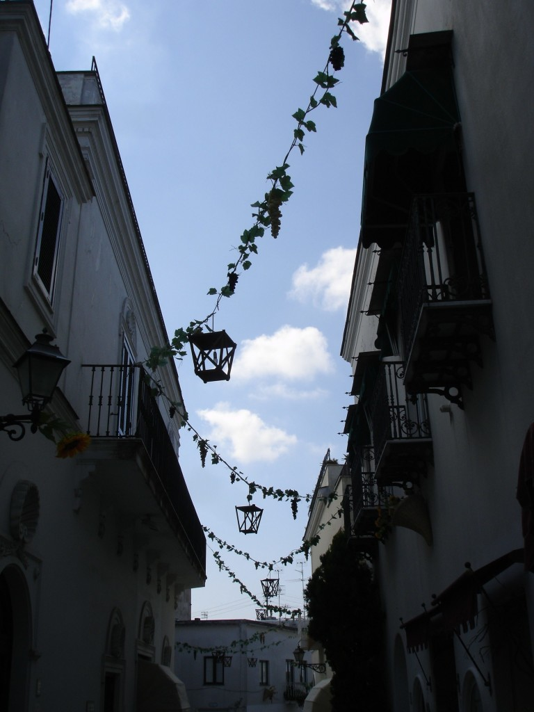 They may have been plastic, but the vines dangling over Viale De Tommaso were still charming