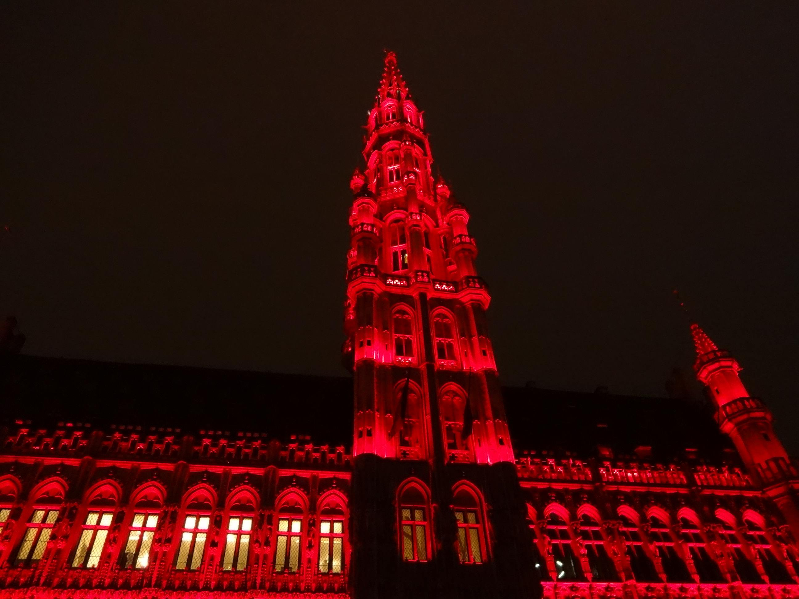 http://www.theladytravels.com/wp-content/uploads/Brussels-Christmas-2014-Grand-Place-light-show-red.jpg
