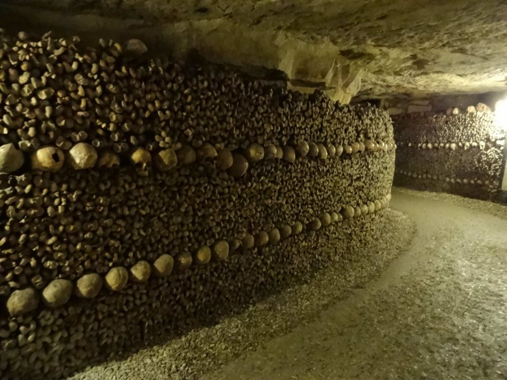 Yes, these are all bones, holding the earth back behind them