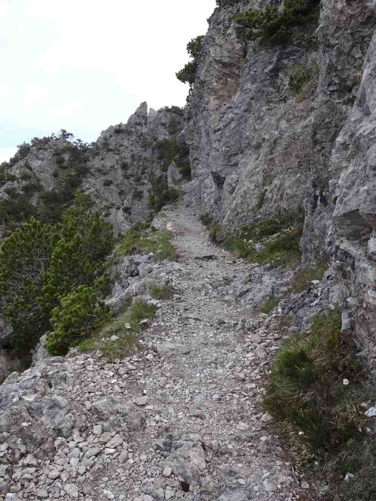 After a 45 minute ascent the landscape drastically changed. The forest slipped away, the path became more rocky ...