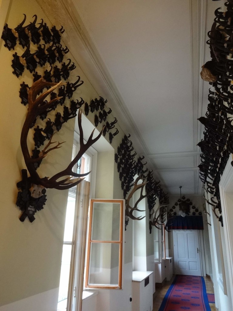 The Emperor's hunting trophies line almost every wall in the Kaiservilla